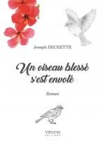 Joseph DECRETTE - Un oiseau blessé s'est envolé