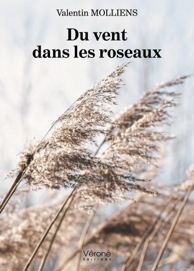 Valentin MOLLIENS - Du vent dans les roseaux